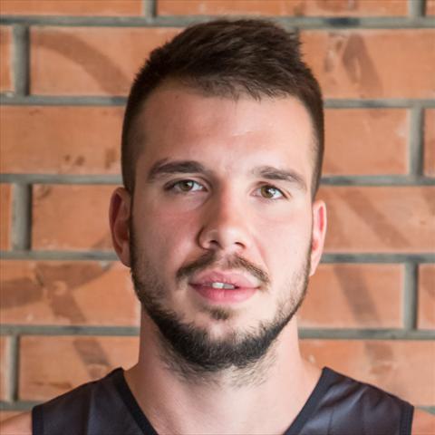 Nikola Perkovic