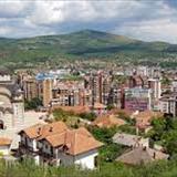 Profile of Darko Rističević